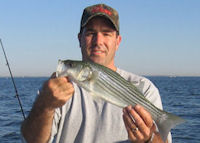 chesapeake bay surface rockfish south river fishing report