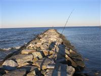 maryland jetty fishing