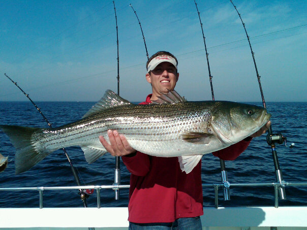 maryland trophy striped bass fishing report
