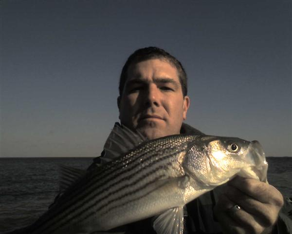 calvert beach jetty fishing striper